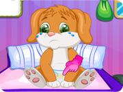 Cute Puppy Caring