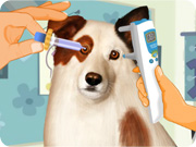 Eye Care Dog with a Blog