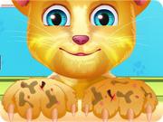 Talking Ginger Paw Caring